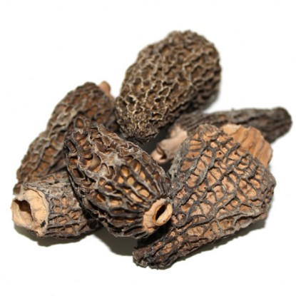 Dried Morel Mushrooms 2 oz