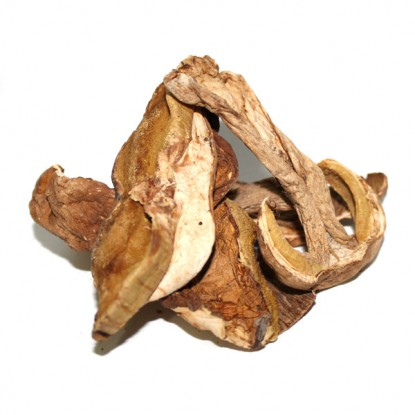 Dried Porcini Grade B Tub - 1 Lb.