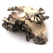 Dried Maitake - 1 Lb.