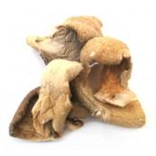 Dried Oyster Mushroom 8 oz.