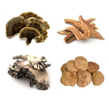 Med Mushrooms 4 oz. Combo