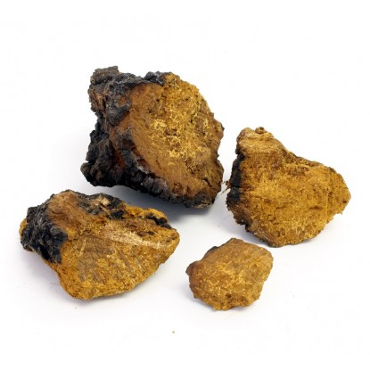Dried Chaga Mushrooms 4 oz.
