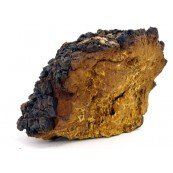Dried Chaga Mushrooms 1 Lb.