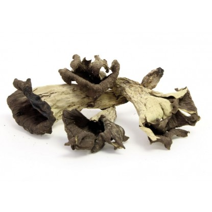 Dried Black Trumpets - 2 oz.