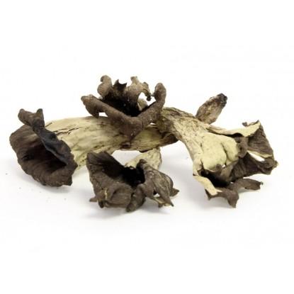 Dried Black Trumpets - 2 oz.
