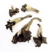 Dried Black Trumpets - 4 oz