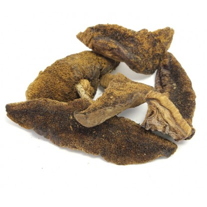 Dried Boletus Luteus 2 oz.