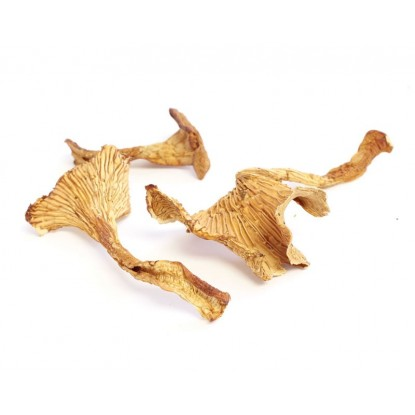 Dried Chanterelles - 4 oz.